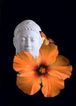 "Buddha II - 5"" x 7"""